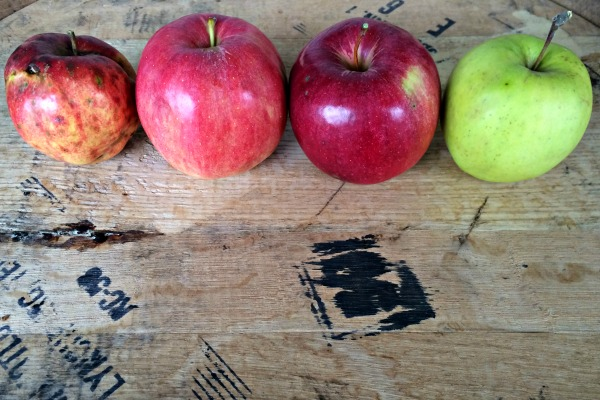 The Basics Of Making Cider